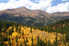 breckenridge färgfall arkivfoton