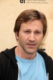 Breckin Meyer Royalty Free Stock Photography