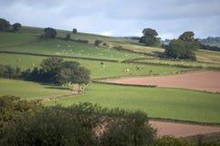 Brecon beacons Royalty Free Stock Photography