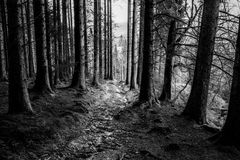 Brecon Beacons Mountain Trail Stock Images