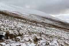 Brecon fyrar, Wales Royaltyfri Fotografi