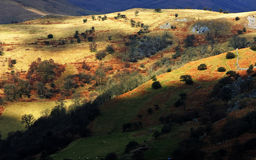 Brecon ilumina o parque nacional o Fotografia de Stock