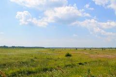 Bred äng och blå himmel Fotografering för Bildbyråer
