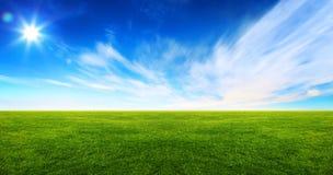 Bred bild av det gröna gräsfältet Fotografering för Bildbyråer