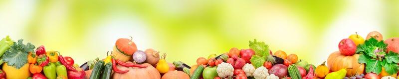Bred collage av nya frukter och grönsaker på grön suddighetsbackgr stock illustrationer