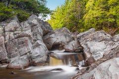 Bred flod längs horn- slinga för älg Royaltyfri Foto