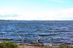 Bred flod mot blå himmel royaltyfri bild
