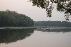 Bred flod som flödar över grön skognedgång afton Reflexioner av träd i det lugna vattnet sundown arkivbild
