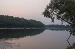 Bred flod som flödar över grön skognedgång afton Reflexioner av träd i det lugna vattnet sundown royaltyfri fotografi