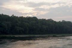Bred flod som flödar över grön skognedgång afton Reflexioner av träd i det lugna vattnet sundown royaltyfria foton