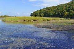 Bred flodmynningövergångszon var sötvatten möter salt vatten Fotografering för Bildbyråer