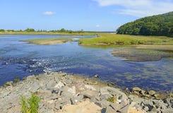 Bred flodmynningövergångszon var sötvatten möter salt vatten Arkivbild