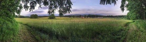 Bred grässlättpanorama med avlägsna berg Arkivfoto