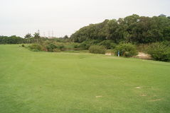 bred lawn royaltyfri fotografi
