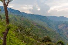 Bred sikt av självmordpunktsikten på Ooty, Indien, 19 Augusti 2014 Royaltyfri Foto