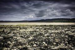 Bred strand, havsväxt, norr Wales, Anglesey, landskap UK, lågvatten Royaltyfri Fotografi