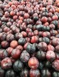 Bred vinkel av högen av nya organiska röda och purpurfärgade plommoner Arkivbild