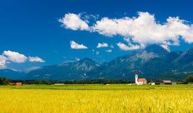 Bred vinkelpanorama av det pittoreska landskapet i Slovenien Arkivbild