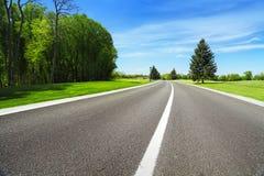 Breda träd för asfaltväg och gräsplan Arkivfoto
