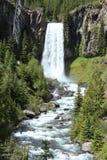 Brede die waterval en rivier door bomen wordt omringd Stock Foto's