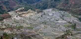 Brede mening over Yuanyang-rijstterrassen in de Mondvlek van de Tijger in Yunnan royalty-vrije stock foto's