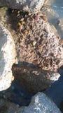 Brede pic van oceaanvulklei royalty-vrije stock afbeelding