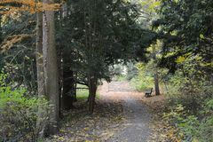 Brede rijweg met mooi aangelegd landschap in de Herfst Royalty-vrije Stock Foto's