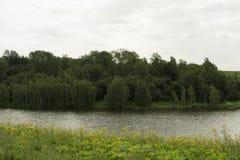 Brede rivier in groene die banken met hout worden overwoekerd Stock Foto