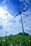 Brede wind royalty-vrije stock fotografie