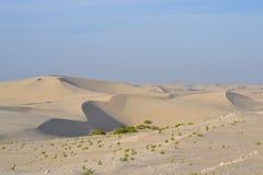 Brede woestijn Stock Foto's