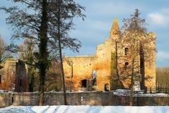 brederode城堡 免版税库存照片
