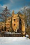 brederode城堡 图库摄影
