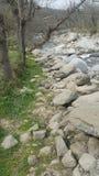 Bredvid floden Arkivbild