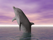 Breeching Dolphin Stock Photo