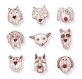 Breed dog collection icon, vector Royalty Free Stock Photos