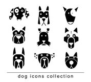 Breed dog collection icon, vector. black color Royalty Free Stock Images