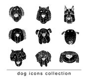 Breed dog collection icon, vector. black color Royalty Free Stock Image
