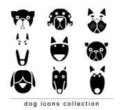 Breed dog collection icon, vector. black color Royalty Free Stock Photos