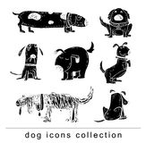 Breed dog collection icon, vector. black color Stock Image