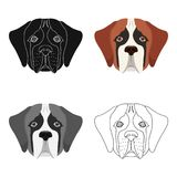 Breed of a dog, St. Bernard.Muzzle of St. Bernard single icon in cartoon style vector symbol stock illustration web. Stock Photo