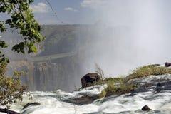 Breed meningslandschap als achtergrond bovenop Victoria Falls, Livingstone, Zambia Royalty-vrije Stock Foto