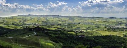 Breed panorama van langhegebied in noordelijk Italië met wijngaarden Stock Afbeeldingen