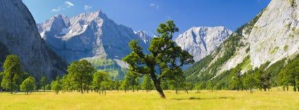 Breed panoramalandschap in Oostenrijk Royalty-vrije Stock Afbeeldingen