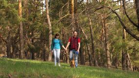 Breeder with a dog and an adult daughter are walking. Family travels with a dog in the woods. Travelers dad, daughter stock video