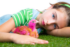 Breeder hens kid girl rancher farmer with chicken chicks Royalty Free Stock Images