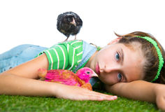 Breeder hens kid girl rancher farmer with chicken chicks Royalty Free Stock Photography