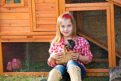 Breeder hens kid girl rancher farmer with chicks in chicken coop Royalty Free Stock Image