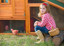 Breeder hens kid girl rancher farmer with chicks in chicken coop. Breeder hens kid girl rancher blond farmer playing with chicks in chicken tractor coop Stock Images