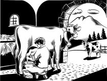 Breeder intent to milk a cow. Intent farmer milking a cow in the barn royalty free illustration
