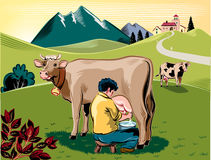Breeder intent to milk a cow. On a mountain meadow vector illustration